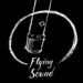 Flying Sound